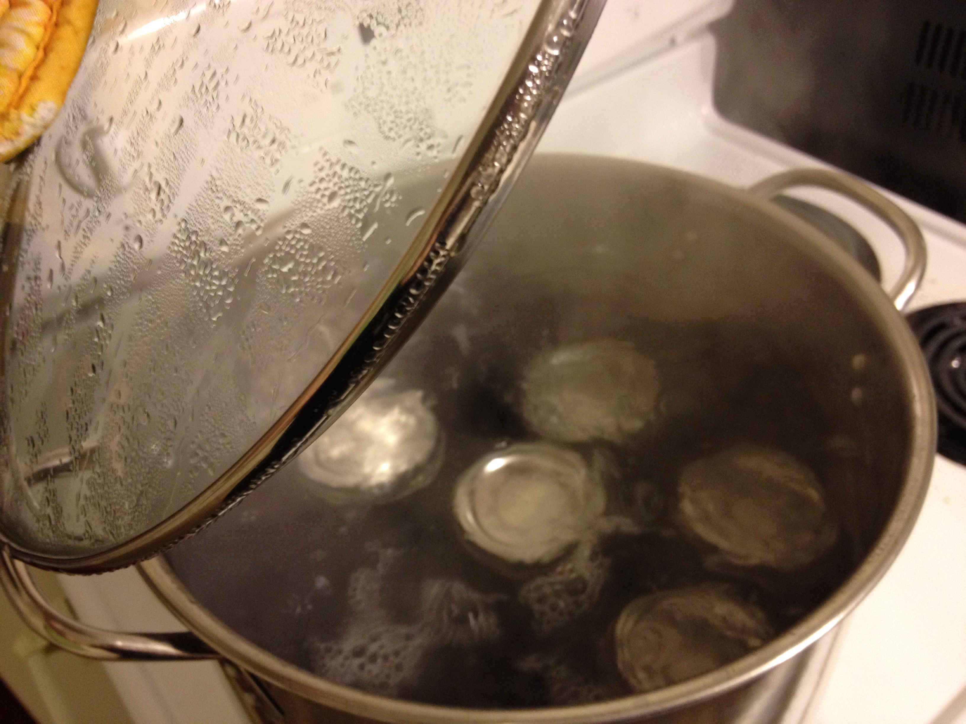 How To… Do Water Bath Canning